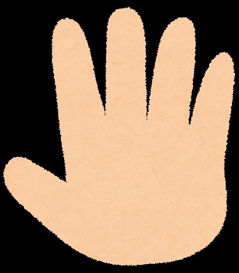 31の時の指